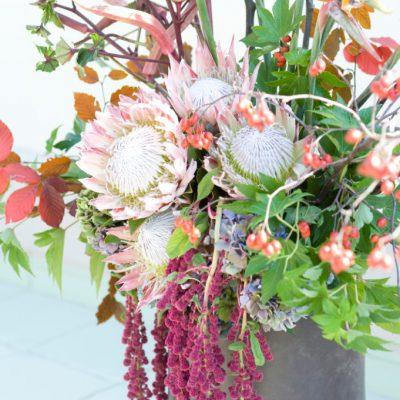 レストランオープン祝い花