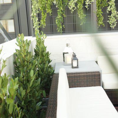 レストランテラス席の植栽
